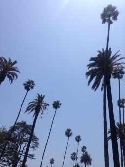 Los Angeles!